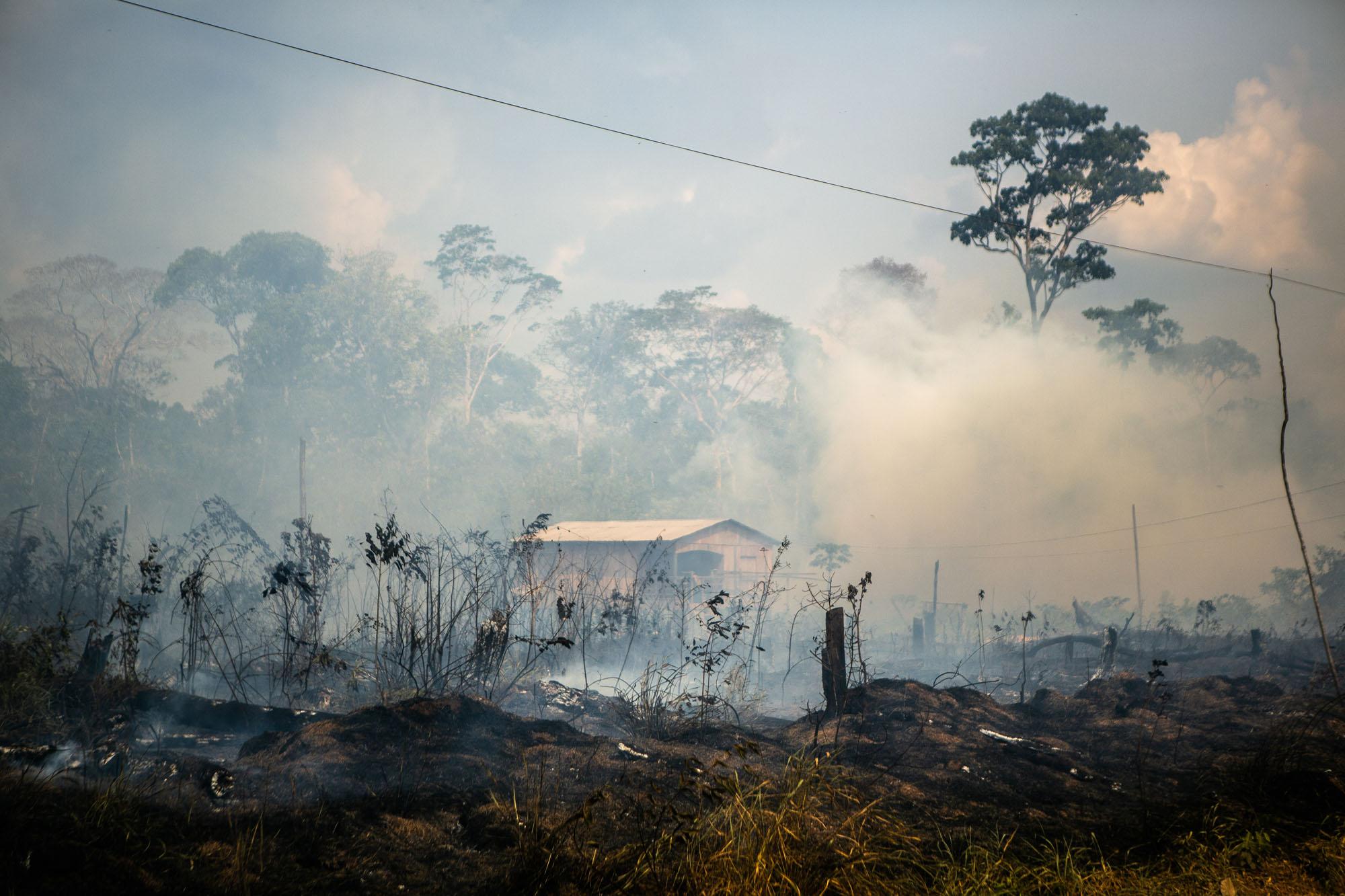 Grilagem na rodovia BR-319: 6 – Impacto da estrada no desmatamento