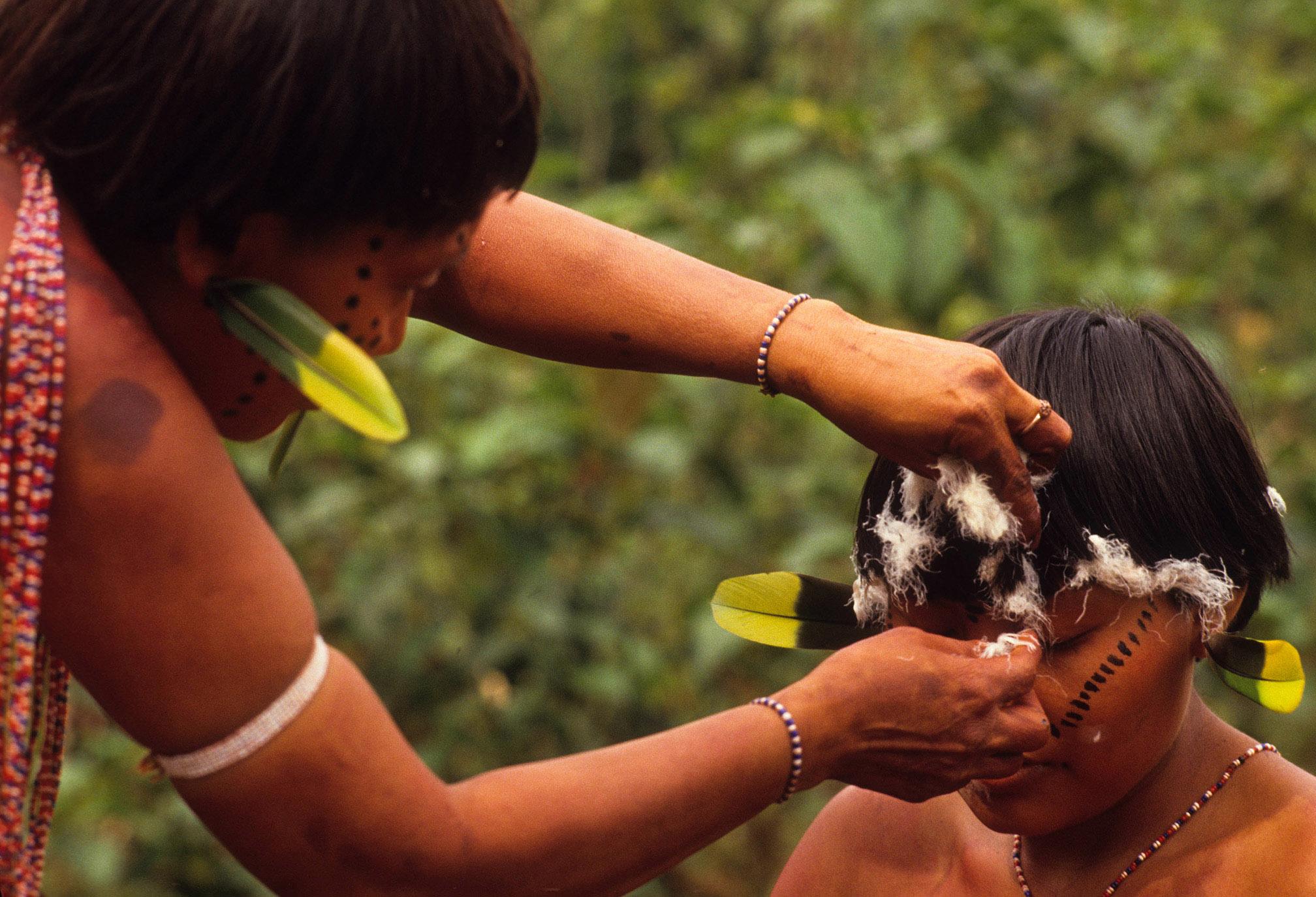 Coronavírus: O que podemos aprender com um xamã da Amazônia? Parte 2: Criação do mundo e a mitologia Yanomami