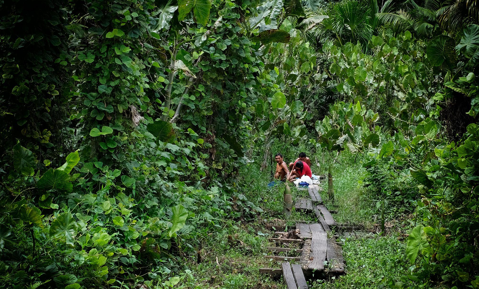 Mais dois indígenas morrem por Covid-19 e Ministério da Saúde alerta para contágio dentro de hospitais de Manaus
