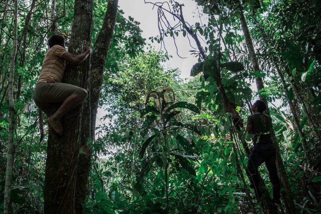 Expedição Yanomami Okrapomai (Christian Braga/ Midia Ninja/2014)