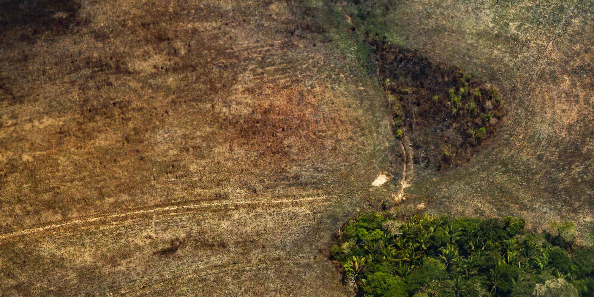 BR-319 ameaça povos indígenas 2: – O pano de fundo