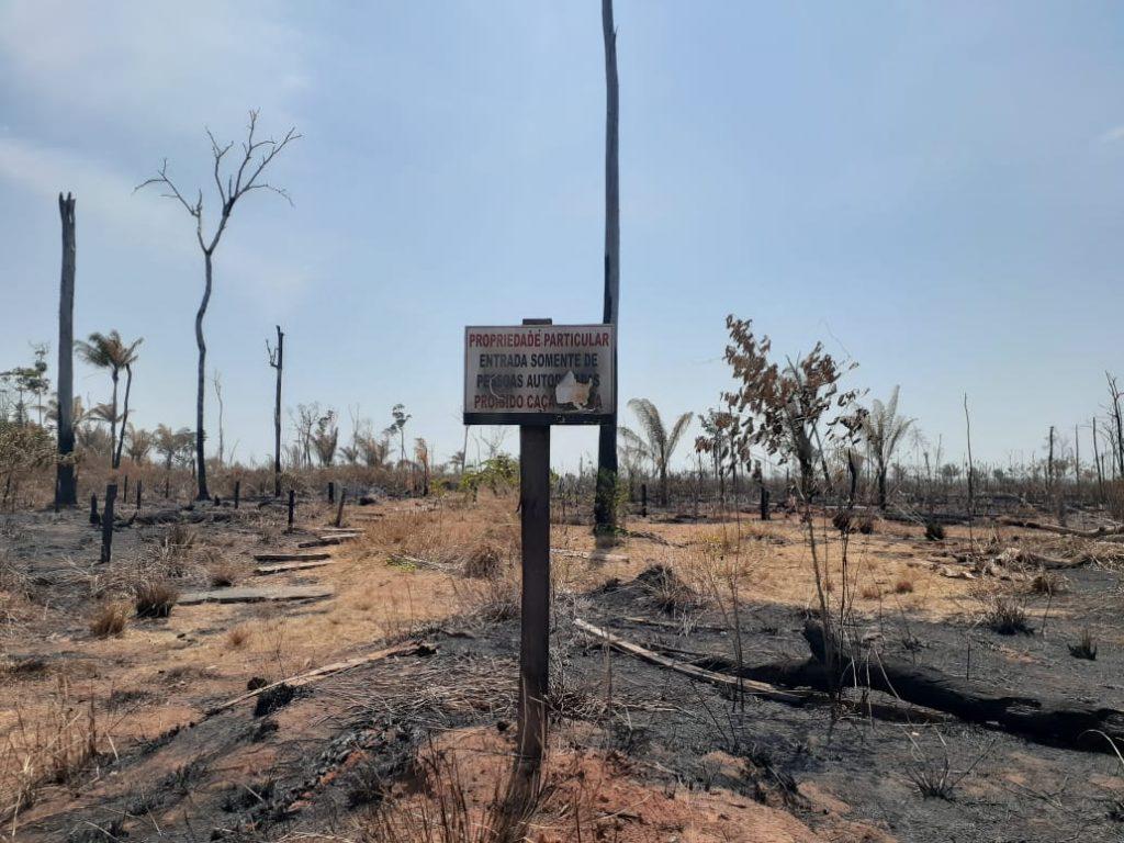 Território invadido por fazendeiros na bacia do Juruena (Divulgação)