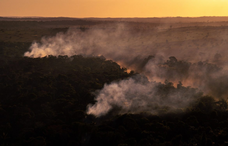 Queimada e desmatamento na Amazônia (Foto_Chrisan Braga_Greenpeace)