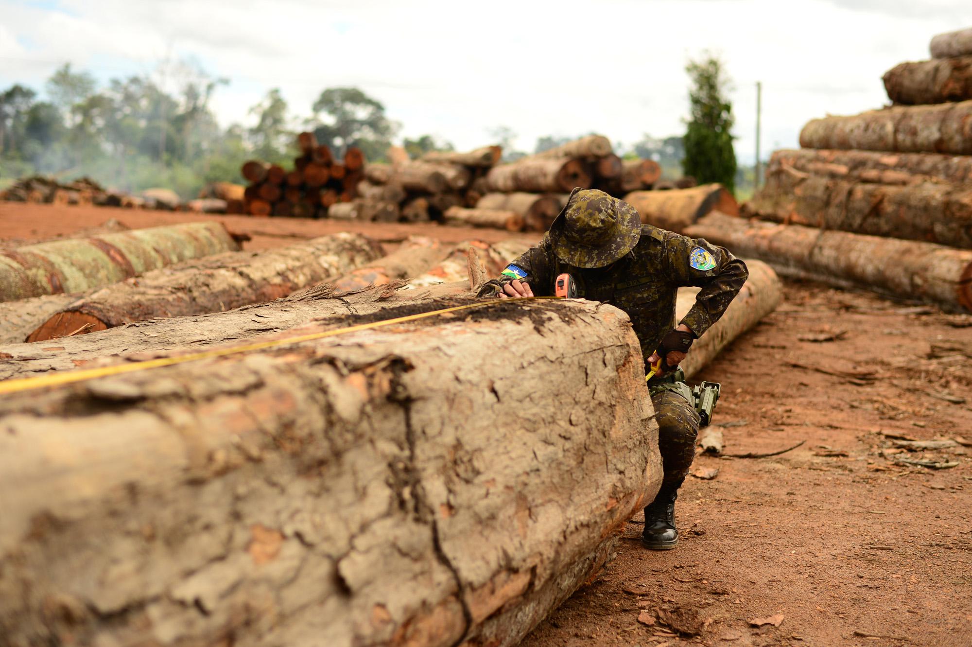 Combate a desmatamentos é duramente criticado por defensores da Amazônia
