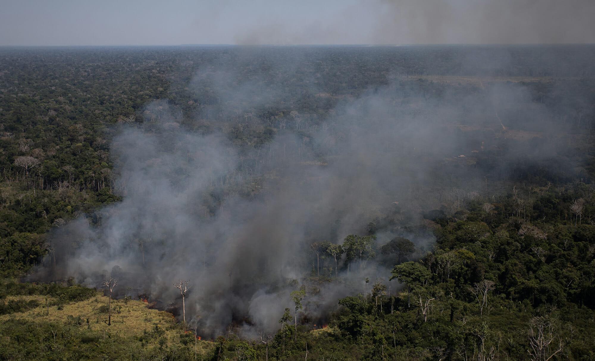 """Amazônia em Chamas 20: """"Tudo que vai queimar está pela frente"""", diz Setzer sobre a temporada do fogo"""