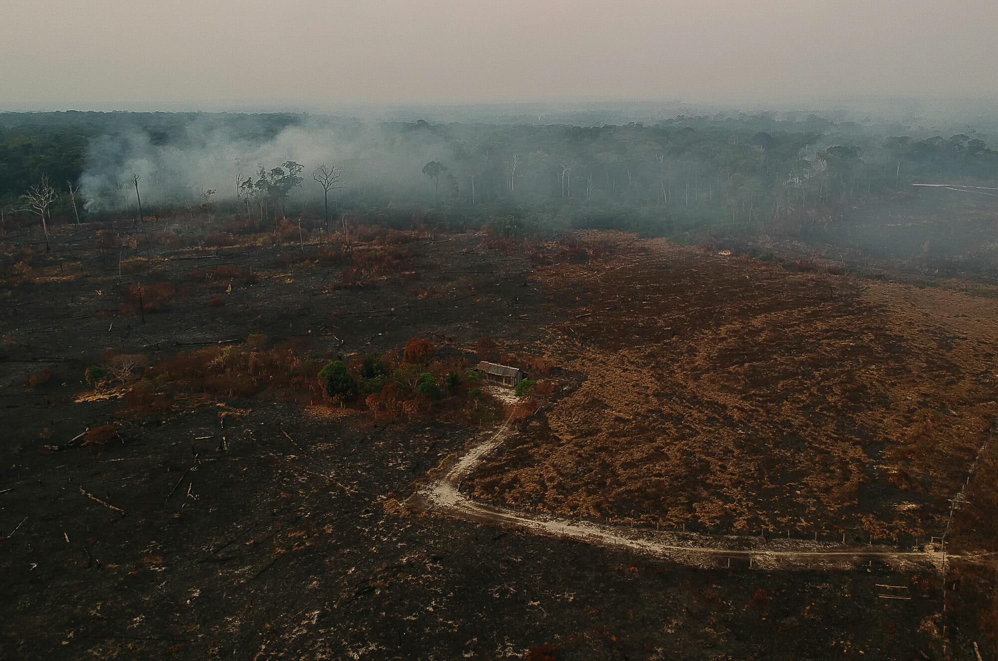 Desmatamento na Amazônia avança para áreas antes intocadas