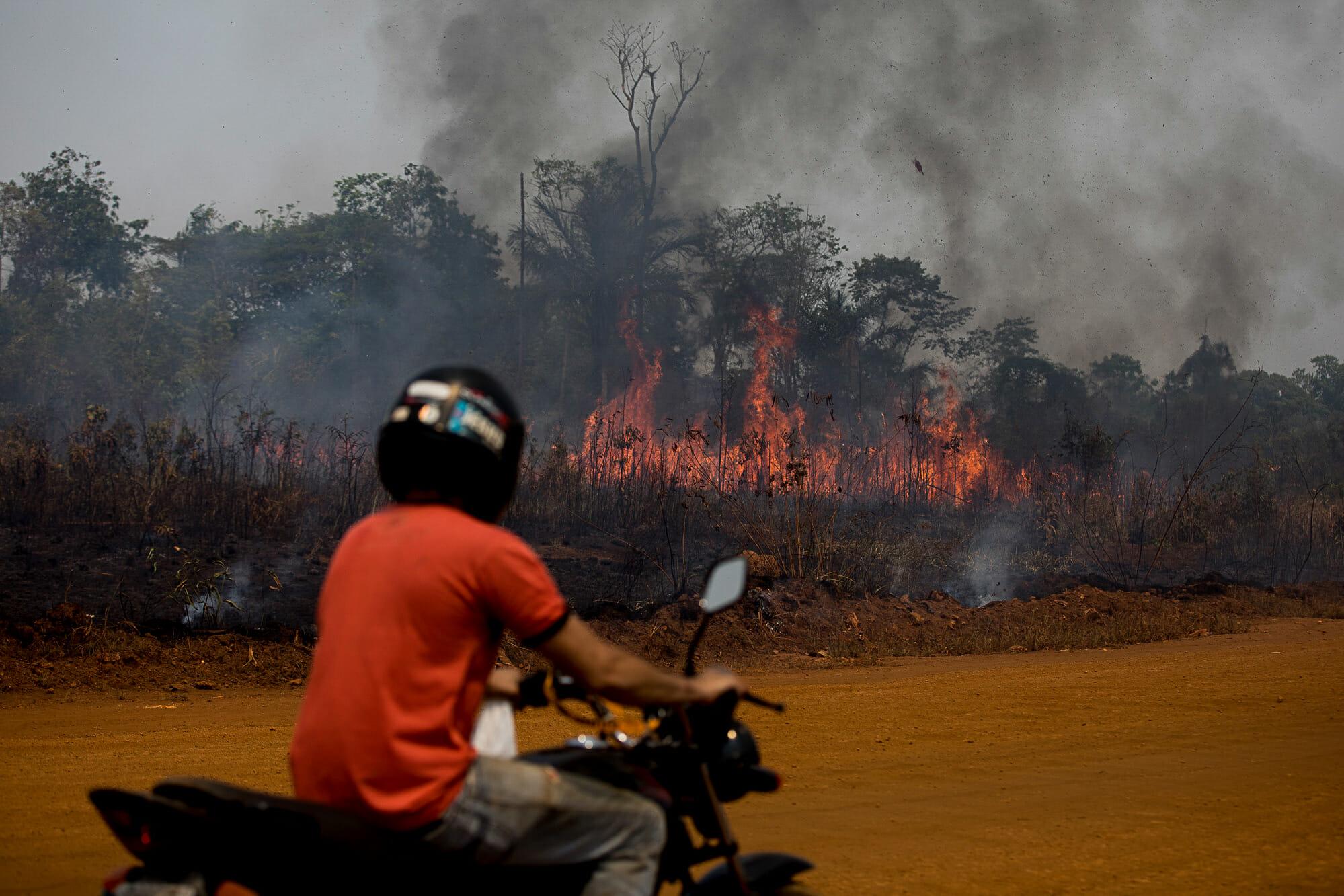 BR-319 – O começo do fim para a floresta amazônica brasileira