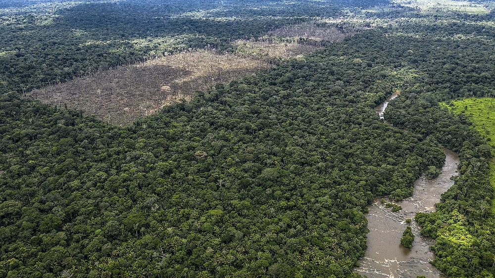 Desafetações e crimes regularizados: distopias na Amazônia aqui e agora