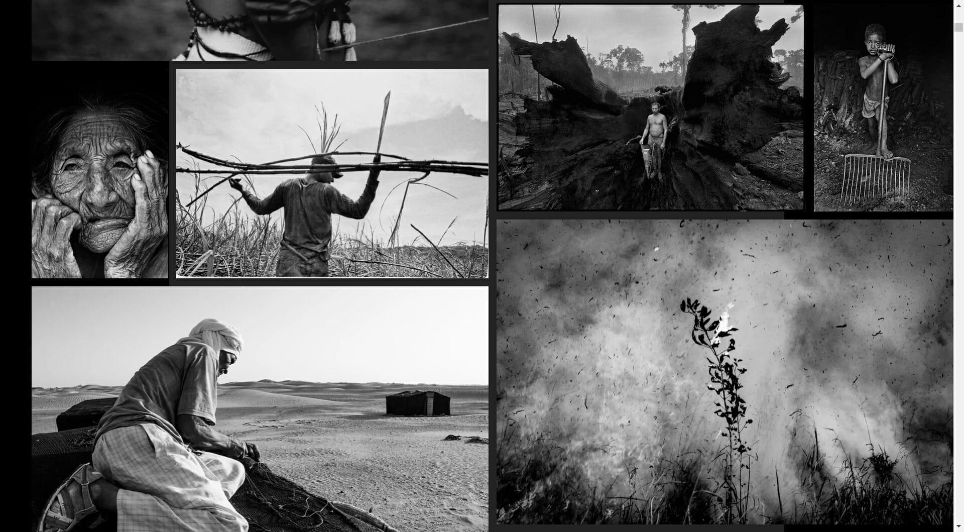 A fotografia se reinventa e se une na pandemia