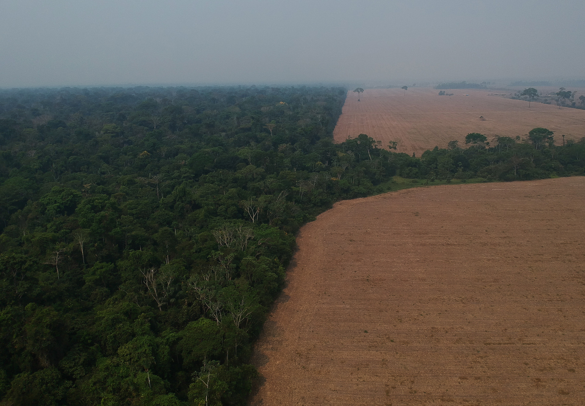 Nota Pública: Nem um hectare a menos!!!