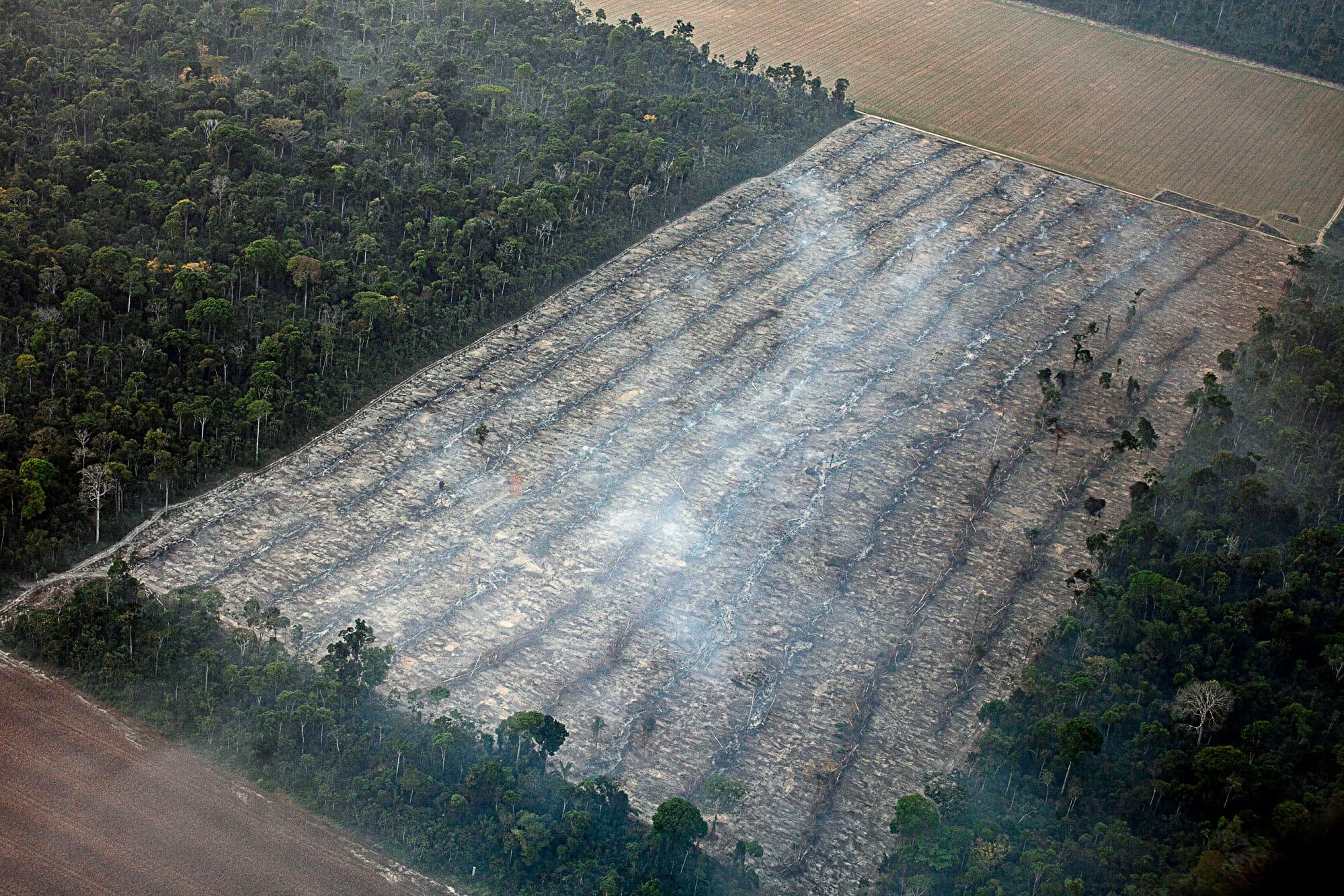 O Desmatamento da Amazônia Brasileira: 20 – Áreas Protegidas