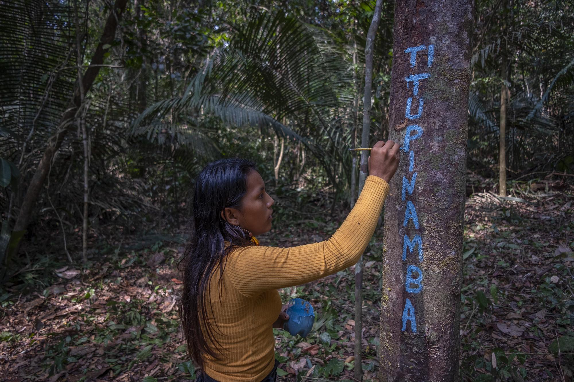 Autodemarcação Tupinambá reivindica reconhecimento do território no Pará