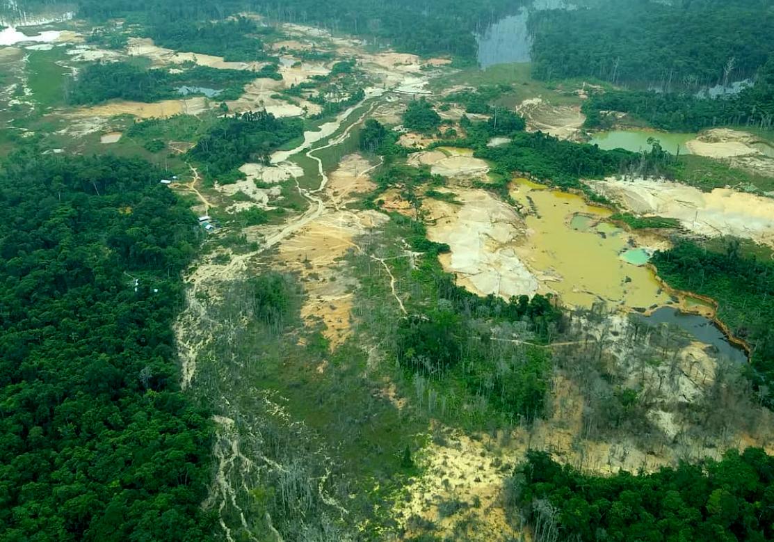 Contaminação por mercúrio e covid na Terra Yanomami