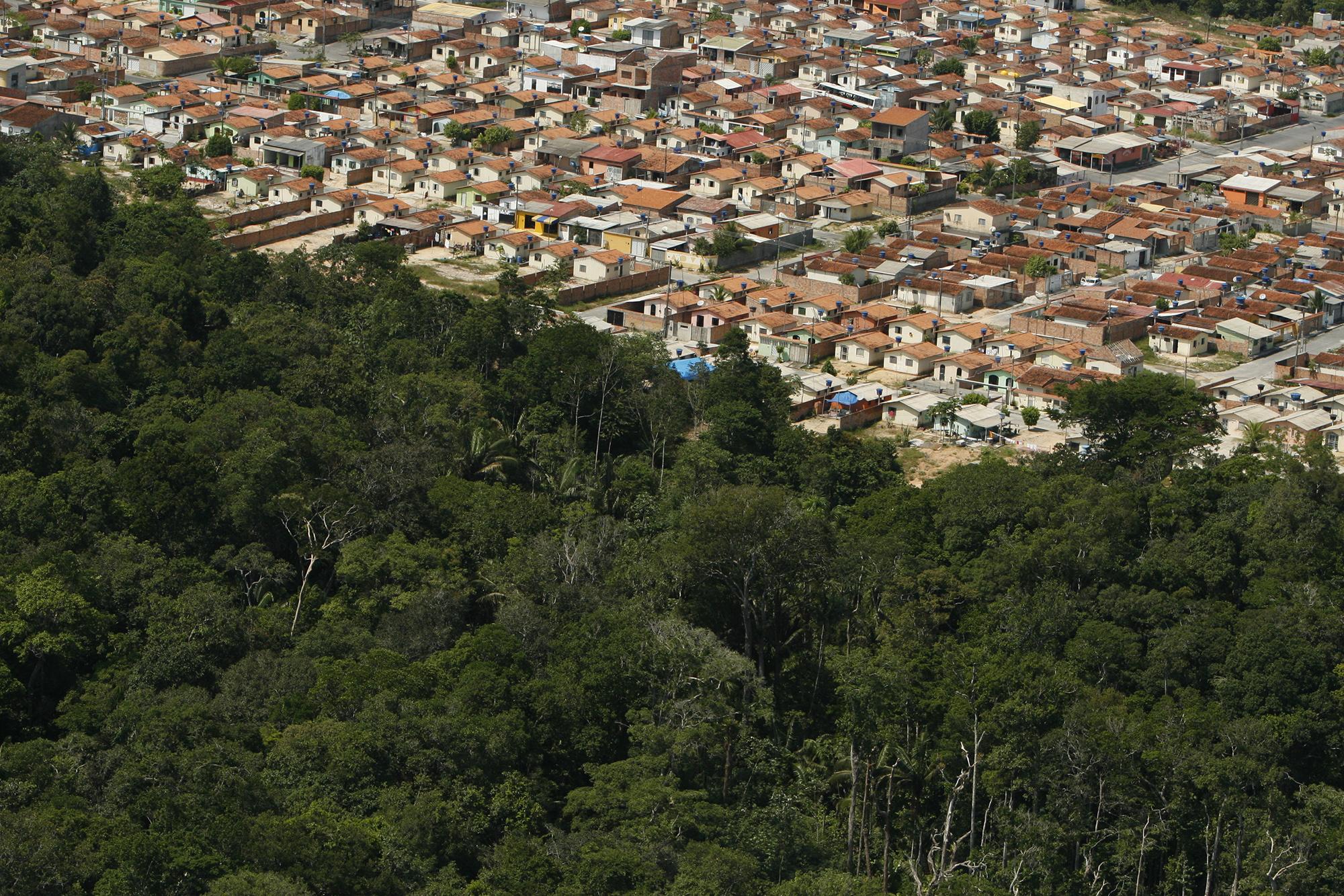 O Desmatamento da Amazônia Brasileira: 12 – Crescimento populacional e Dinâmica doméstica