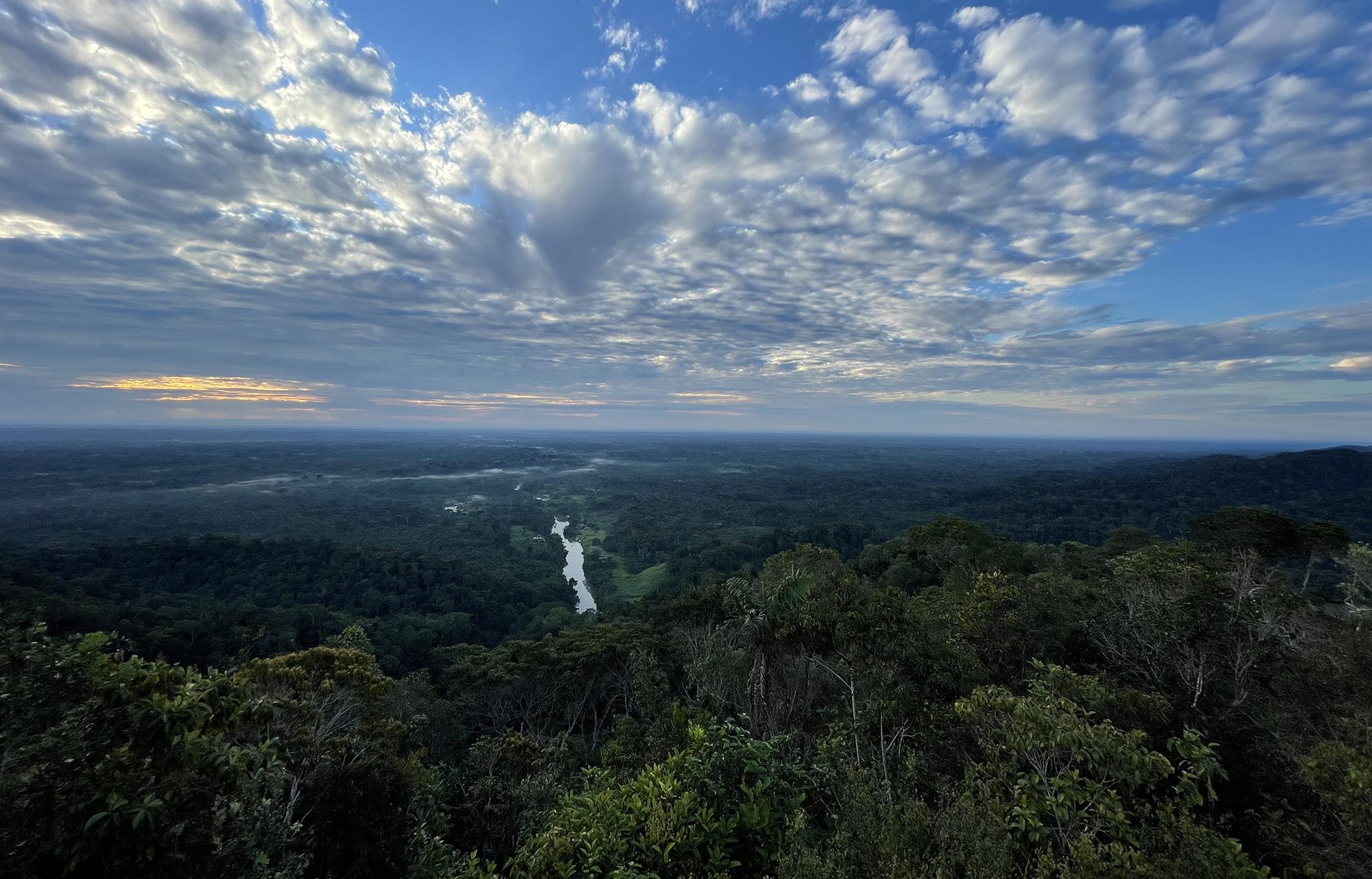O Desmatamento da Amazônia Brasileira: 22 – Vazamento de benefícios climáticos de áreas protegidas