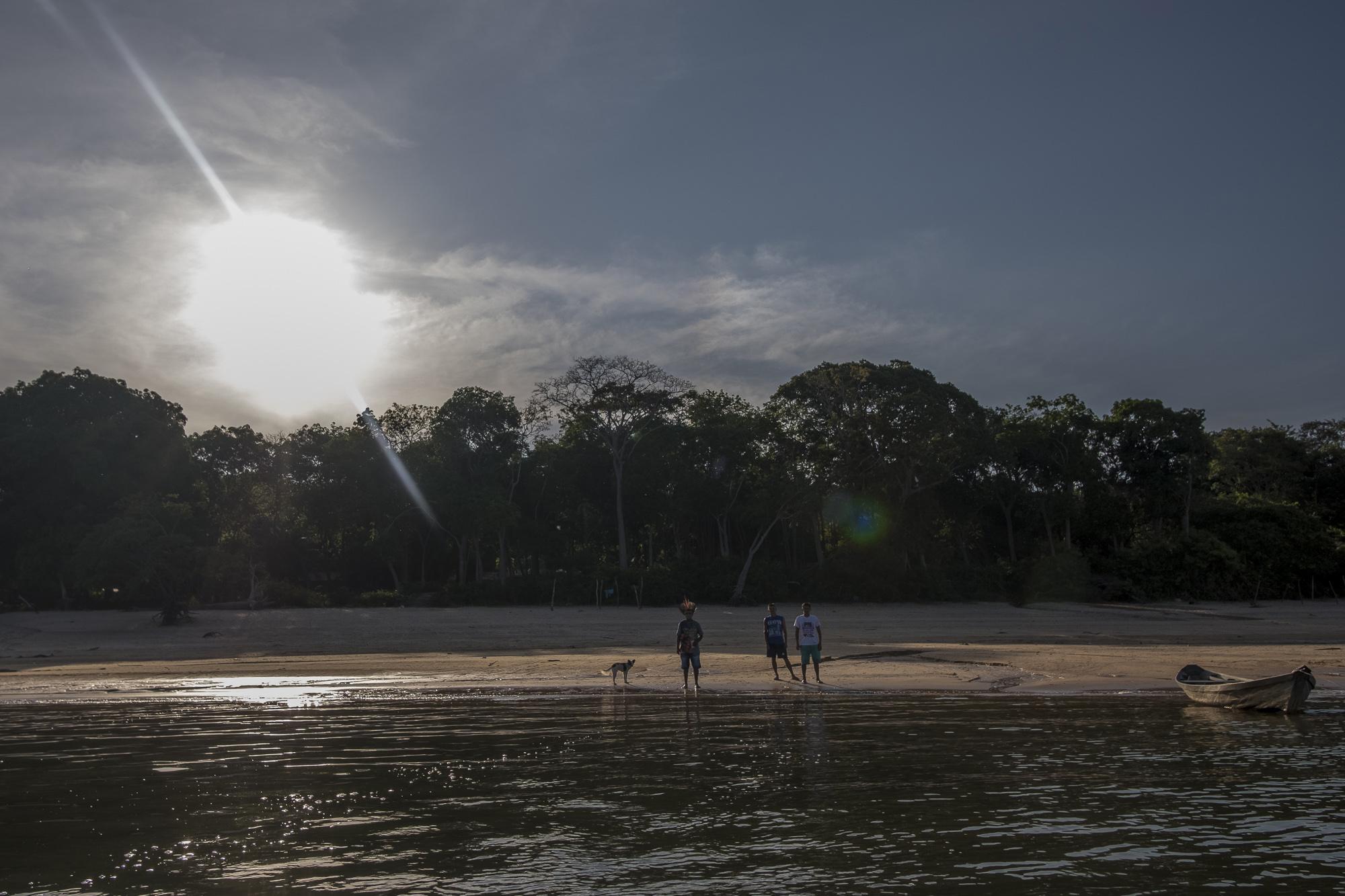 ICMBio quer plano de manejo madeireiro em reserva extrativista do Pará
