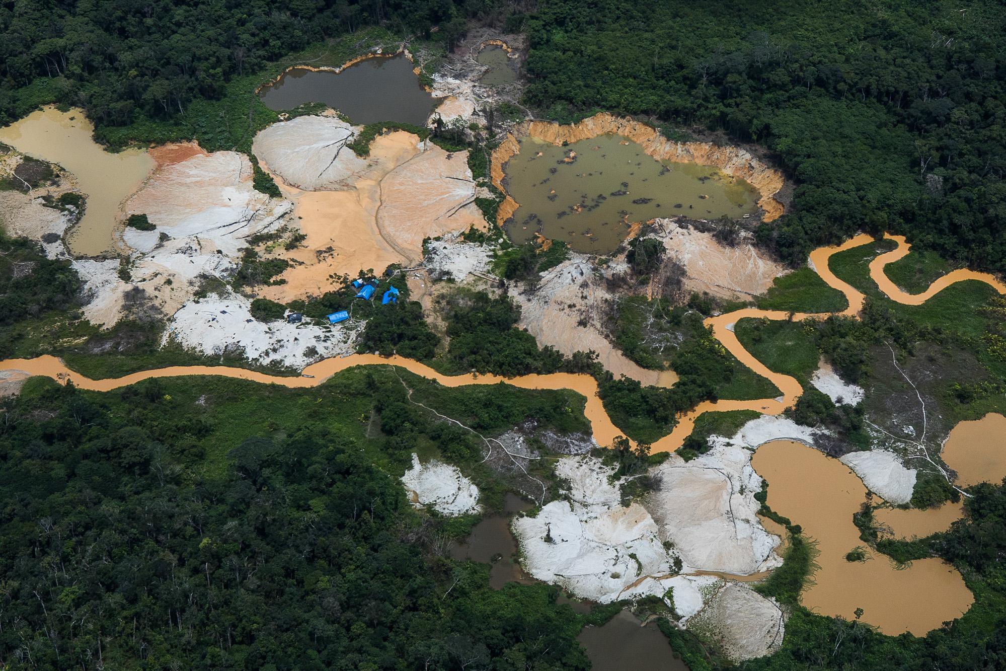 'Ouro do Sangue Yanomami' é finalista no Prêmio Patrícia Acioli de Direitos Humanos