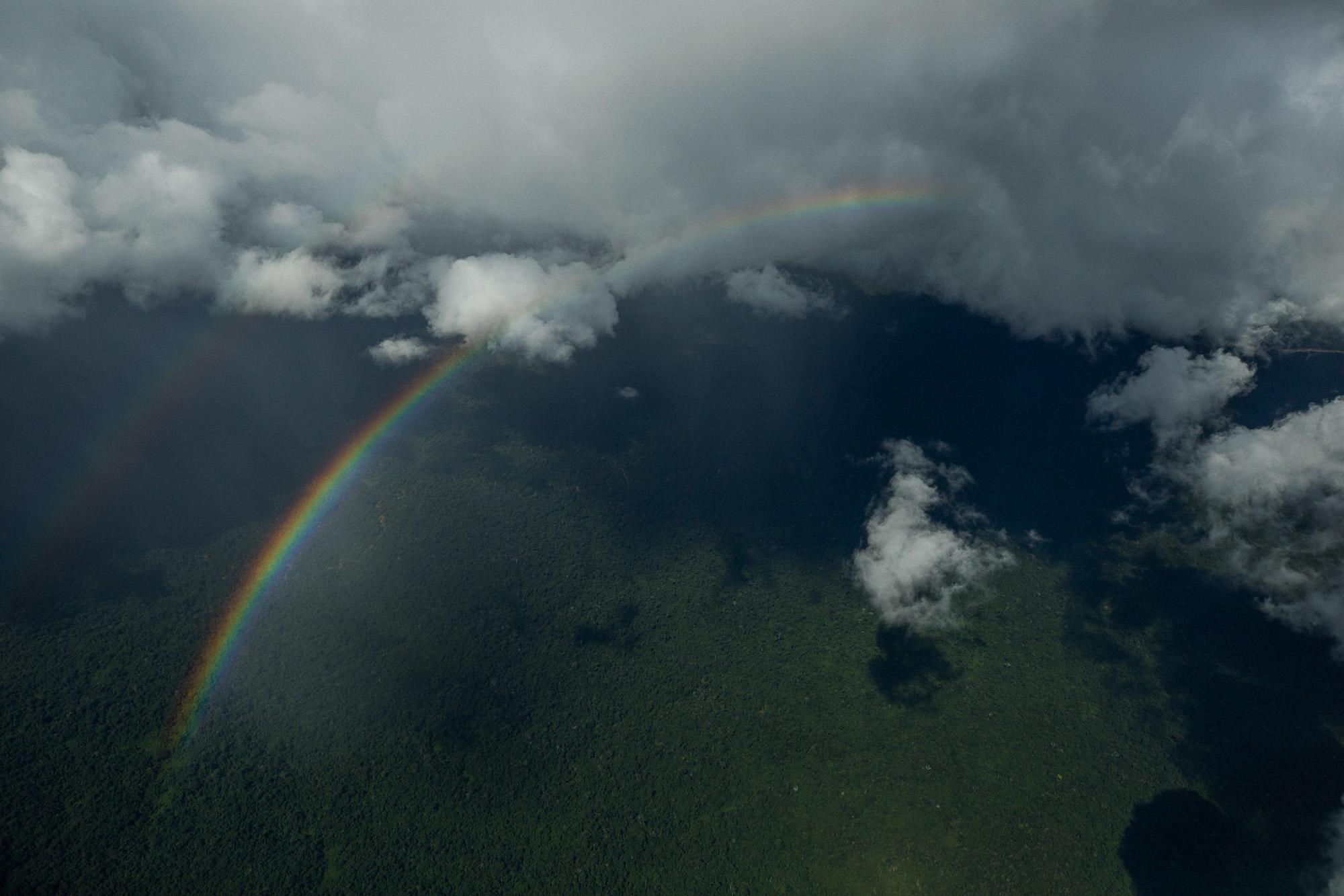 IPCC: Floresta protegida e terras indígenas demarcadas são barreiras contra crise climática, dizem especialistas