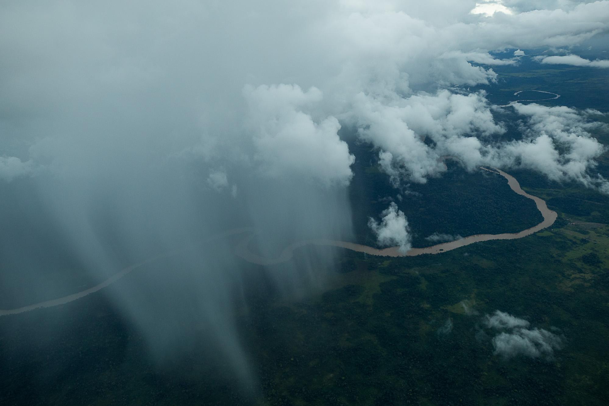 O valor intrínseco da biodiversidade amazônica: 2 – Mudar a argumentação para conservação