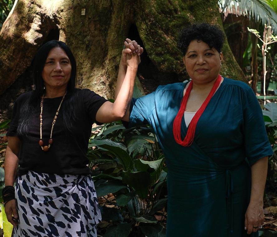 Documentário revela a 'visão de dentro' da Amazônia Real