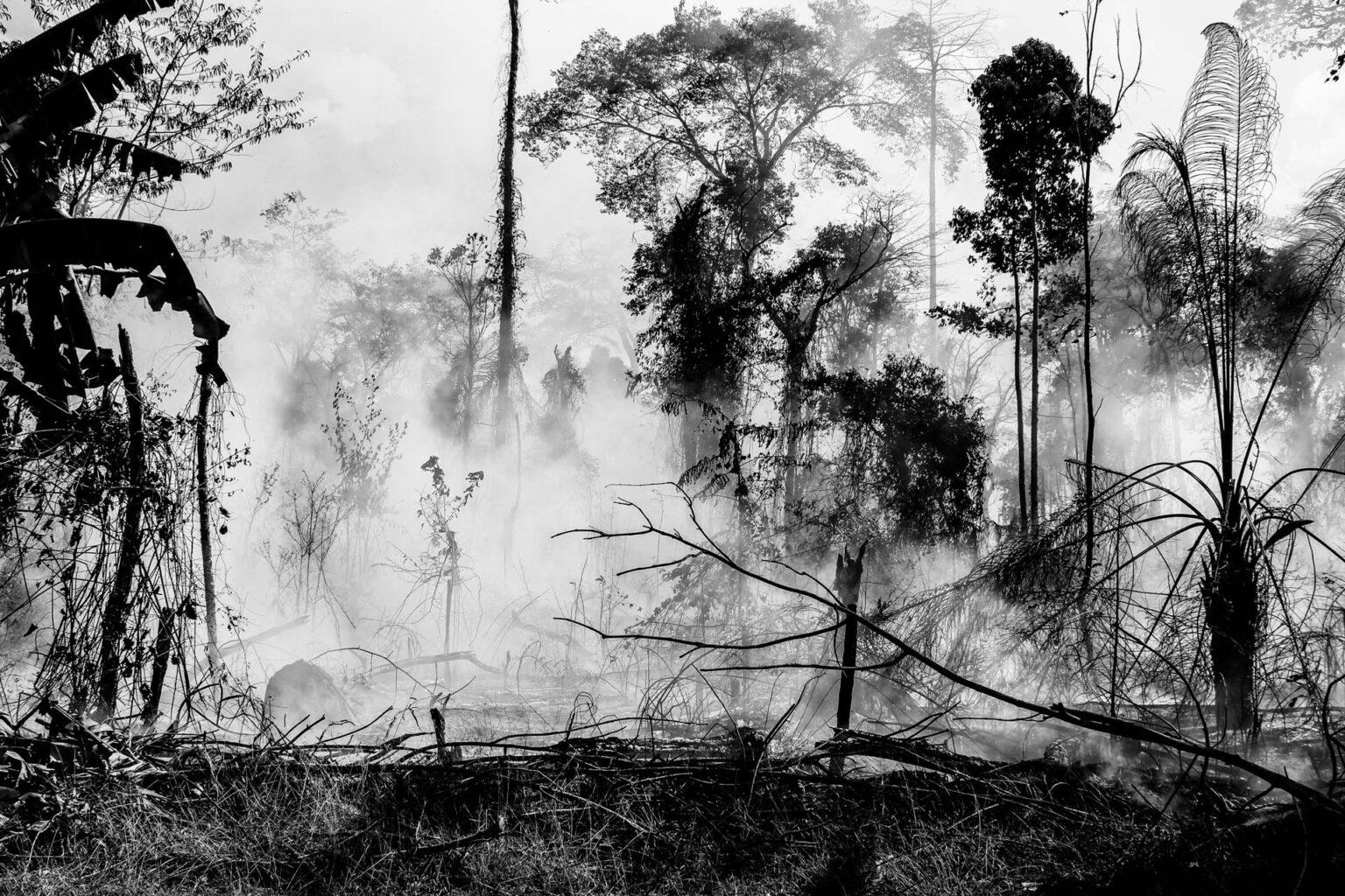 O mito de origem de uma breve história sobre a fotografia no Estado de Rondônia