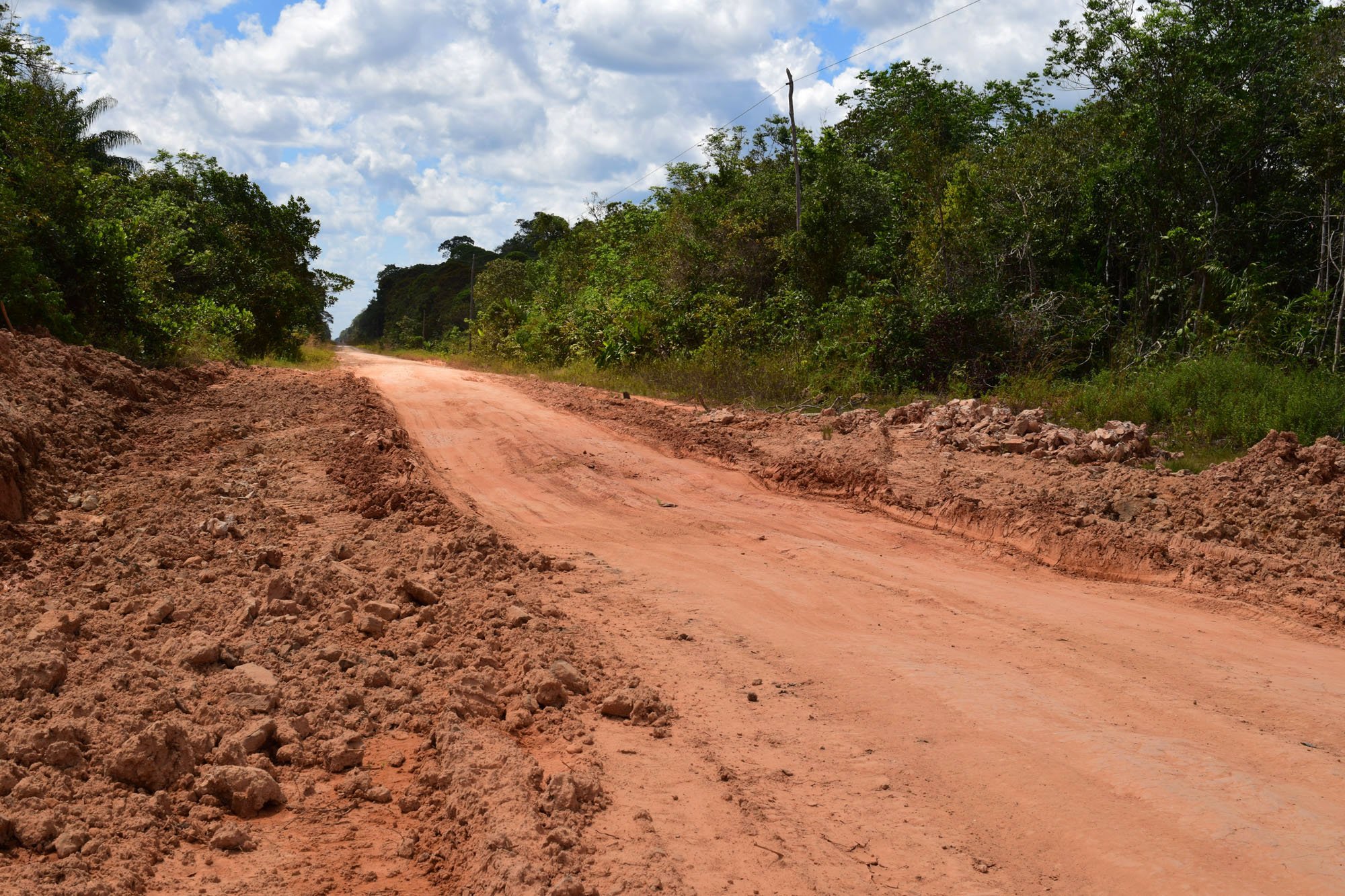 Estradas na Amazônia: um mal?