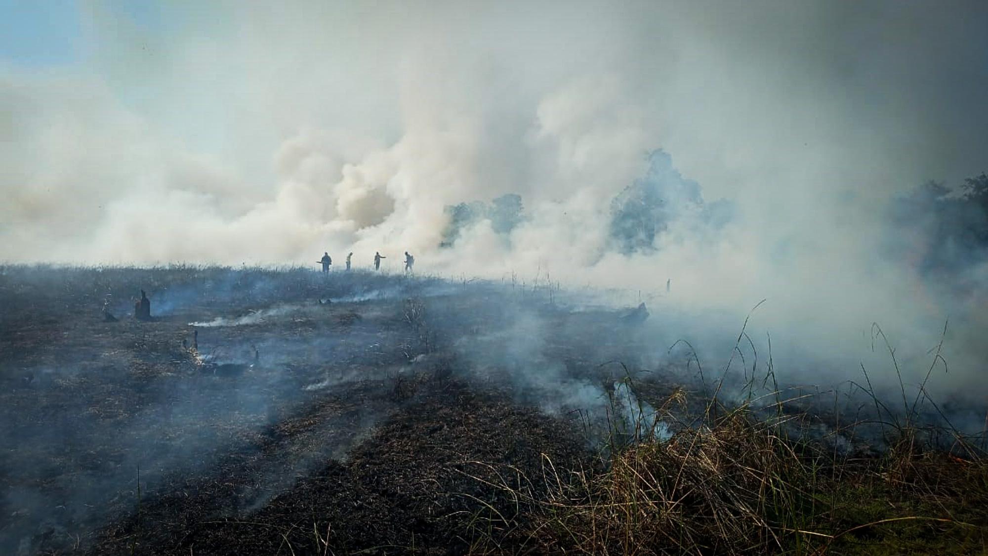 Brigadas voluntárias lutam contra fogo no Xingu