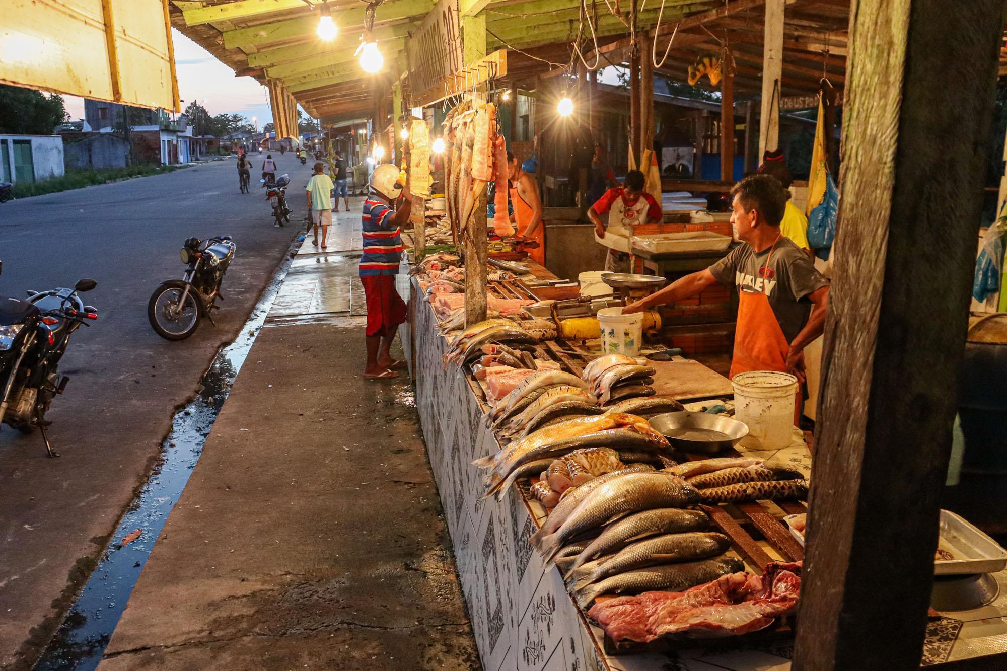 Surto da urina preta prejudica pescadores no Amazonas