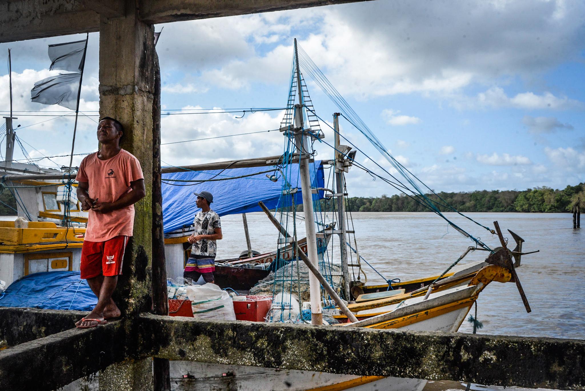 No Pará, pescadores reivindicam seguro-defeso para preservar o caranguejo-uçá